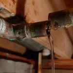leaky pipes; photo by 13 of clubs via flickr
